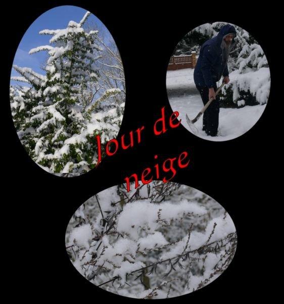 neige0701101.jpg
