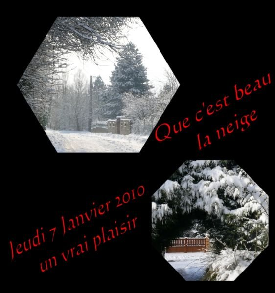 neige0701102.jpg